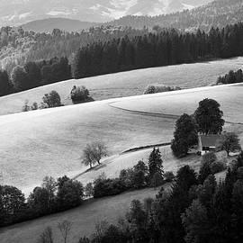 Alexander Kunz - Cultured Landscape
