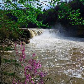 Michael Rucker - Cumberland Falls