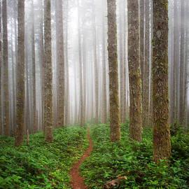 Leland D Howard - Cummins Wilderness Trail
