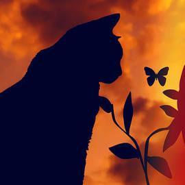 Kathy Franklin - Curious Cat