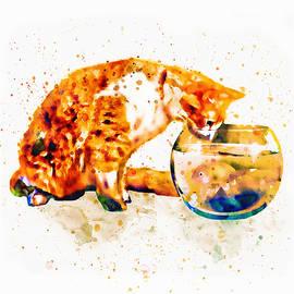 Marian Voicu - Curious Cat