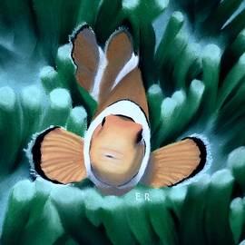 Eric Rosales - Curious Clownfish