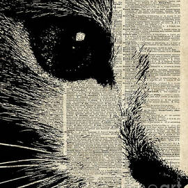 Cute Cat Illustration Over Old Dictionary Page