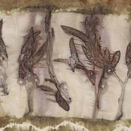Carolyn Doe - Dance Of The Eucalyptus Leaves