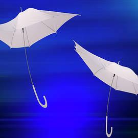 larisa Fedotova - Dance umbrella