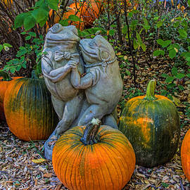 Alana Thrower - Dancing in the Pumpkin Patch