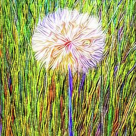 Joel Bruce Wallach - Dandelion In Glory