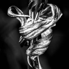 James Aiken - Danse Macabre IV