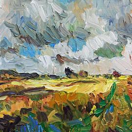 Stefan Boettcher - Dark Clouds Bright Fields