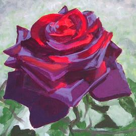 Angelina Sofronova - Dark red rose