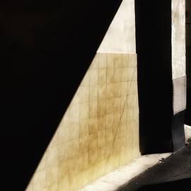 Julian Darcy - Darkness at noon