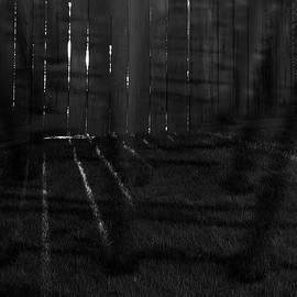 Dan Bernard - Darkness Be My Pillow