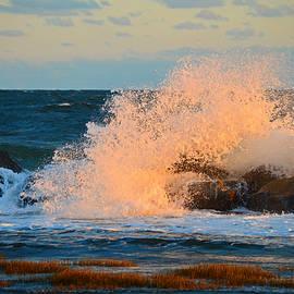 Dianne Cowen - Dawn Breaking on Cape Cod Bay