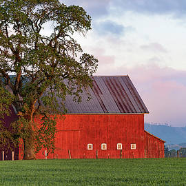 Dee Browning - Dawn on The Farm