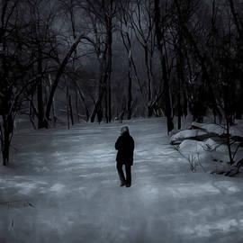 Bonnie Follett - Dead of Winter