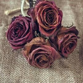 Dead Roses - Carlos Caetano