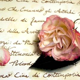 Kathy Bucari - Dear Rose