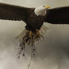 Jai Johnson - Decor For The Nest Bald Eagle Art