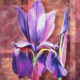 Irina Sztukowski - Decorative Iris