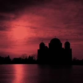 2141 Photography - Deep Purple Petka