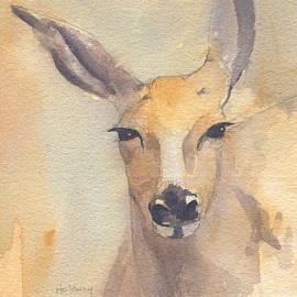 Deer - John Holdway