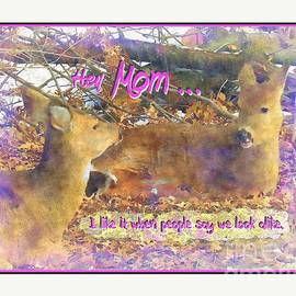 Shelly Weingart - Deer Mother and Child Fun Poster