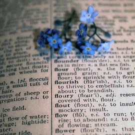 Nina Silver - Defining Flowerets