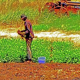 Joseph Coulombe - Delta Organic Farmer