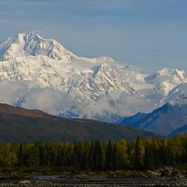 Sam Amato - Denali Alaska