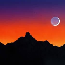 Joe Roselle - Desert Moon