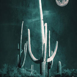 Kathy Franklin - Desert Moon