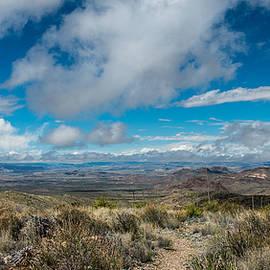 Bob Marquis  - Desert Panorama