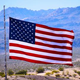 Barbara Snyder - Desert Patriot American Flag