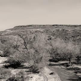 Gordon Beck - Desert Stream Monochrome