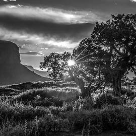 Eric Albright - Desert Sunset Black and White