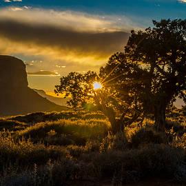 Eric Albright - Desert Sunset