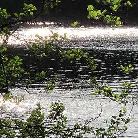 Seija Talolahti - Diamonds In The Lake