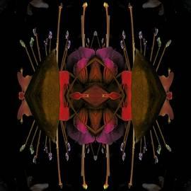 Nancy Pauling - Different Fuchsia 3