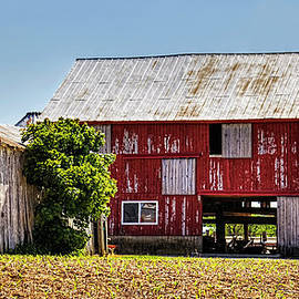 William Sturgell - Dilapidated Barn and Shed