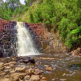 Tony Crehan - Dip Falls - North West Tasmania