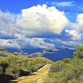 Barbara Zahno - Dirt Road to Four Peaks