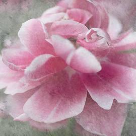 Jenny Rainbow - Divine Gift