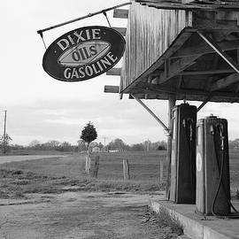 Rodney Lee Williams - Dixie Gasoline