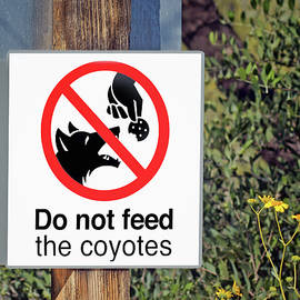 Nikolyn McDonald - Do Not Feed - Coyotes - Sign