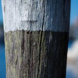 Allan Morrison - Dock piling