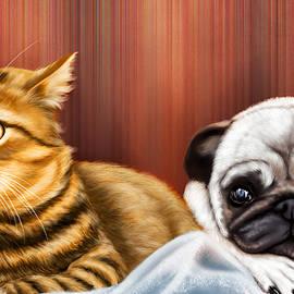 Arun Sivaprasad - Dog and Cat watching TV