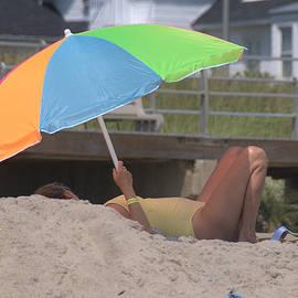 Sue Rosen - Dog Day of summer