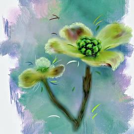 Mary Timman -  Dogwood Blossom
