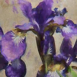 Rene Crystal - Doing Some Iris Dreaming