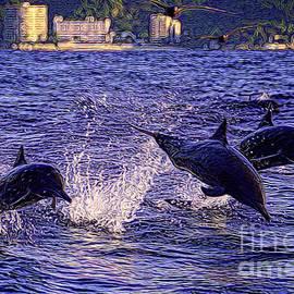 Patrick Witz - Dolphins